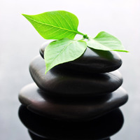 Traditional Chinese Medicine and natural fertility