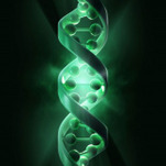 What is Genetic Counselling?